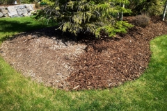 mulch top up in tree bed