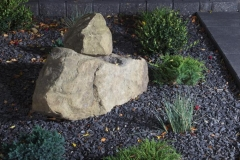 rundle ground cover and assorted perennials