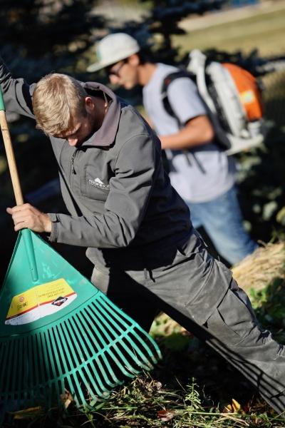 assiniboine crew raking leaves
