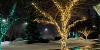 assiniboine_lights_0000_Nutrien-Lights-6-of-7