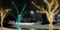 assiniboine_lights_0001_Nutrien-Lights-5-of-7