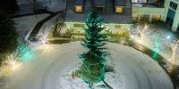 assiniboine_lights_0021_Christmas-Portrait-2-of-4