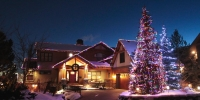 c6-led-multi-on-house-and-c6-led-multi-and-icy-white-on-spruce-tree-