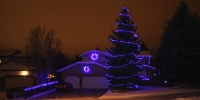 led-c9-blue-on-house-and-on-tree