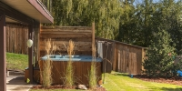 Linear-Style-Privacy-Screen-Ornamental-Grass